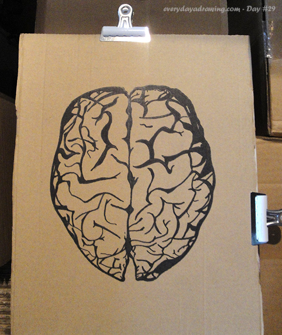 Picture of the brain drawn with black marker on cardboard