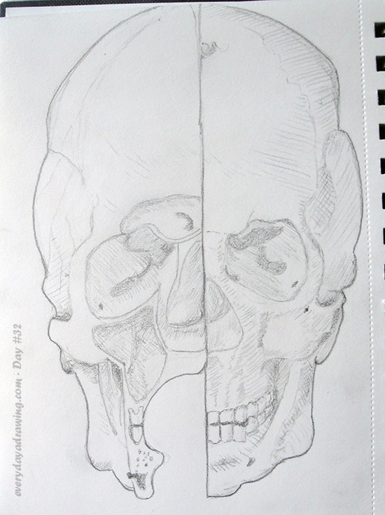 Drawing of one of Leonardo da Vinci's skull studies. Copied from an upside down reference.
