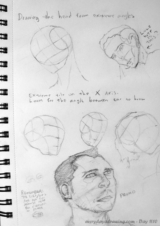 Day 010 Drawing The Head From Extreme Angles Every Day A Drawing