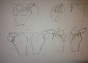 Scapula designs.