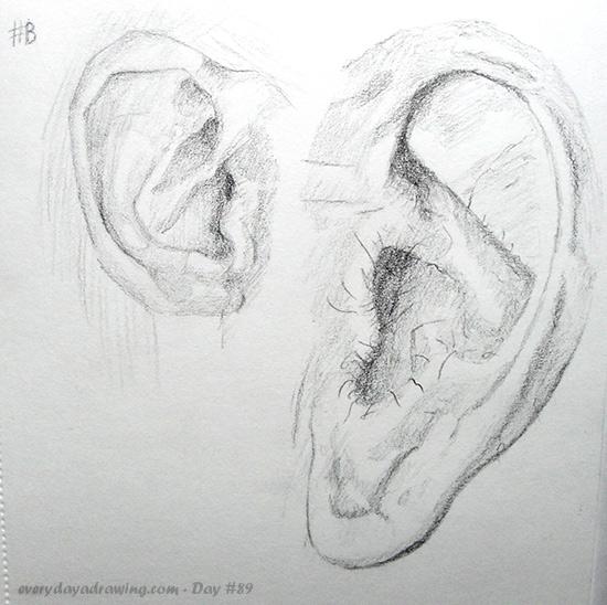 Ears drawn in pencil