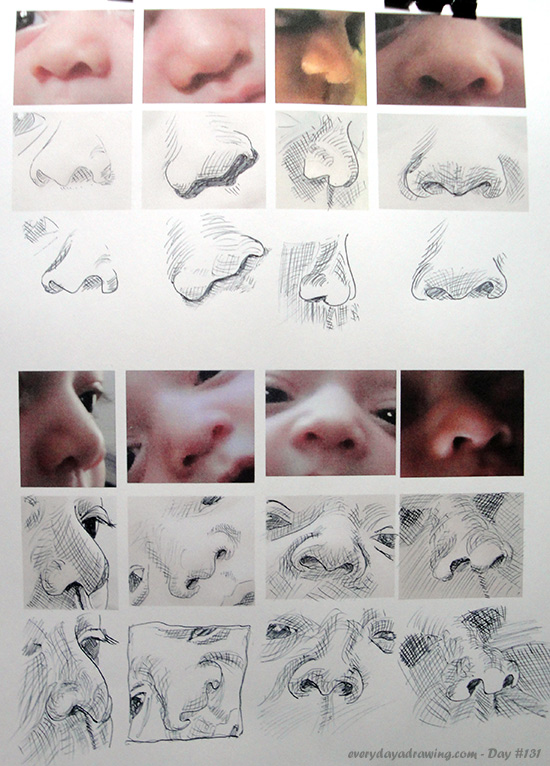 Drawings of Baby noses for crosshatching practice