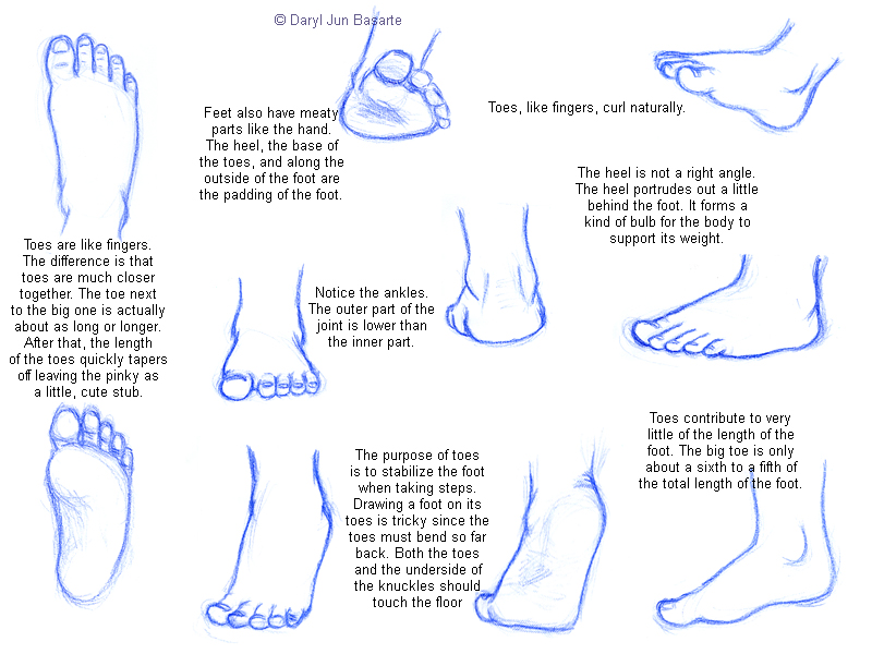 Doing a search on google for how to draw feet and i decided to copy all the feet from the page as practice and write out the notes too to help