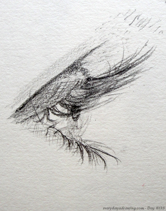 Drawing of an Eye from Profile