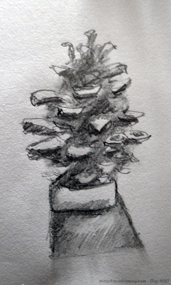 Drawing of pinecone