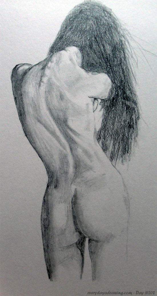 Pencil drawing of the back of a female nude