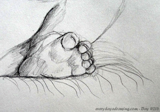 Drawing of Maia's baby foot
