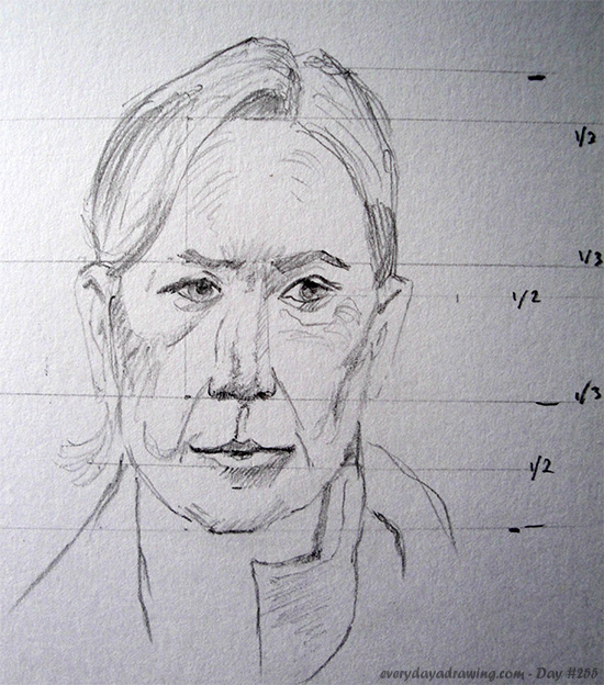 Drawing of head proportions