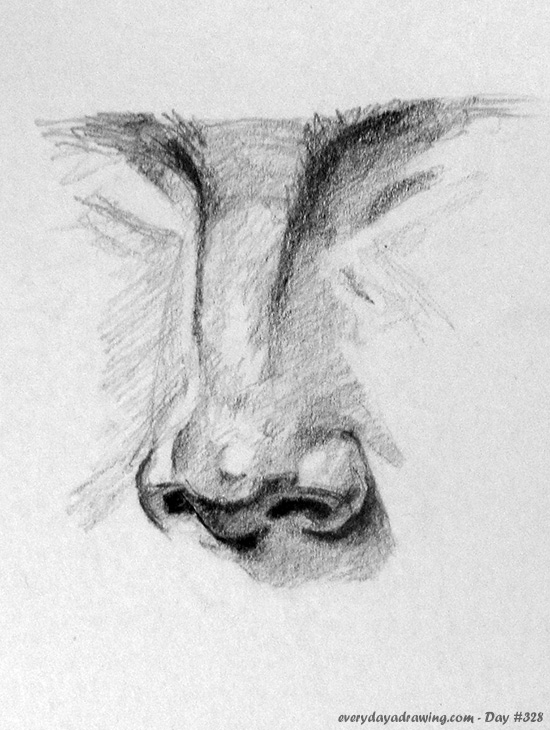 Drawing of a nose